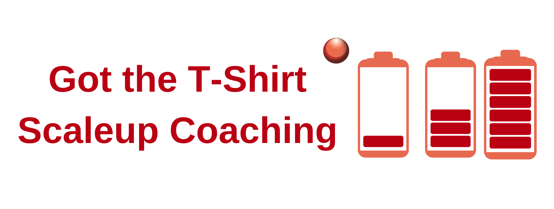 Got the T Shirt Scaleup Coaching